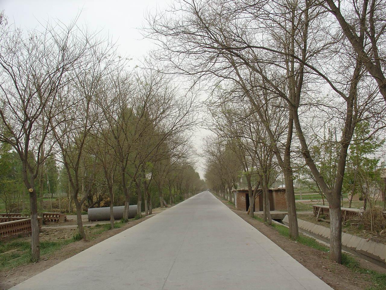 十二期间,甘州区新改建通村公路通村公路共计103条564.4公里。