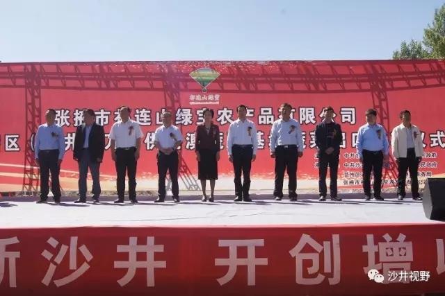 甘州区沙井镇举行供港蔬菜基地蔬菜出口发车仪式