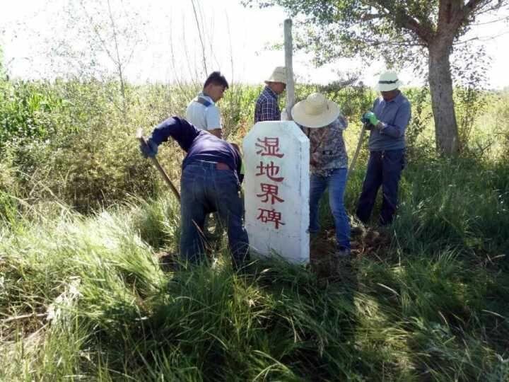 甘州区湿地局全面开展湿地界碑界桩栽设工作