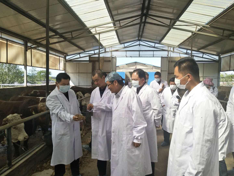 """我区成功举办""""高端人才甘州行""""暨市畜禽养殖业专家服务团科技培训活动"""