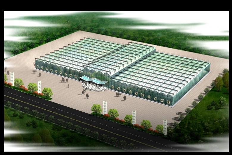 张掖绿洲现代农业试验示范区智能连体温室(苗圃)项目建设进展情况