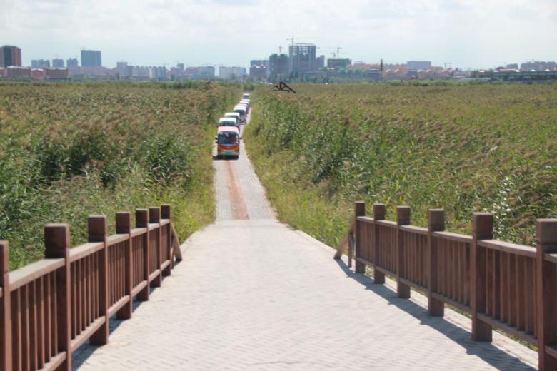 首届丝绸之路(张掖)国际通用航空大会湿地参观考察