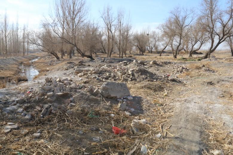 """甘州区粮食局人员分组下沉,积极开展生态环境""""十走行动"""""""