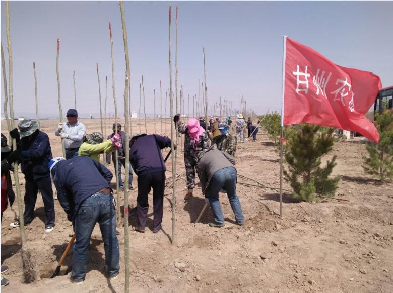 甘州区农机局全面完成植树造林任务