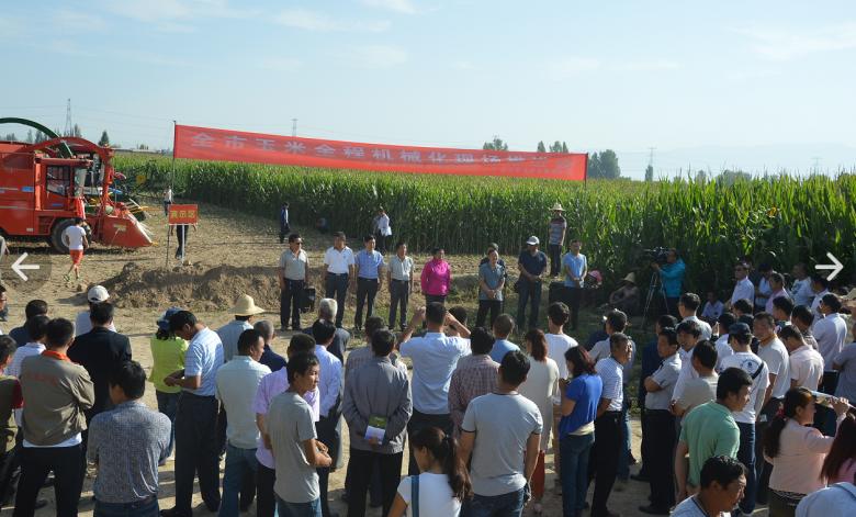甘州区召开玉米全程机械化现场推进会