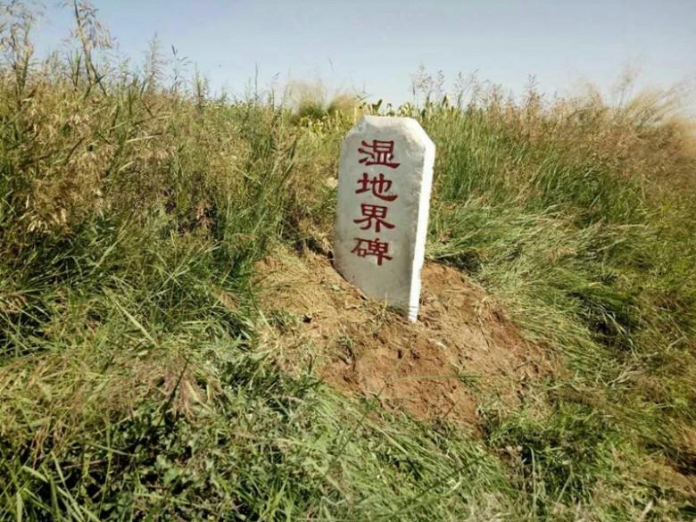 甘州区湿地局完成自然保护区勘界工作