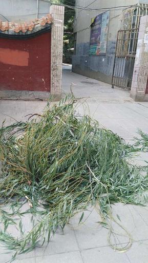 甘州区档案局积极参与全域无垃圾整治活动