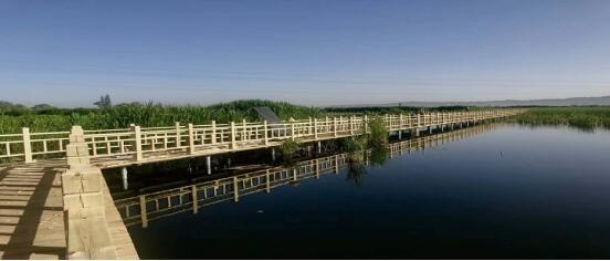 甘州区黑河湿地保护与治理工程项目大力推进 成效显著