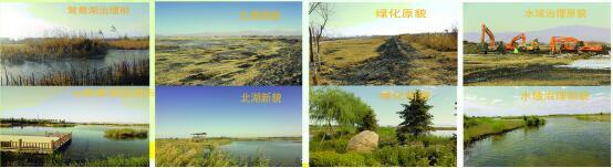 张掖国家湿地公园实施甘州区黑河湿地湖泊生态恢复保护项目取得显著成效