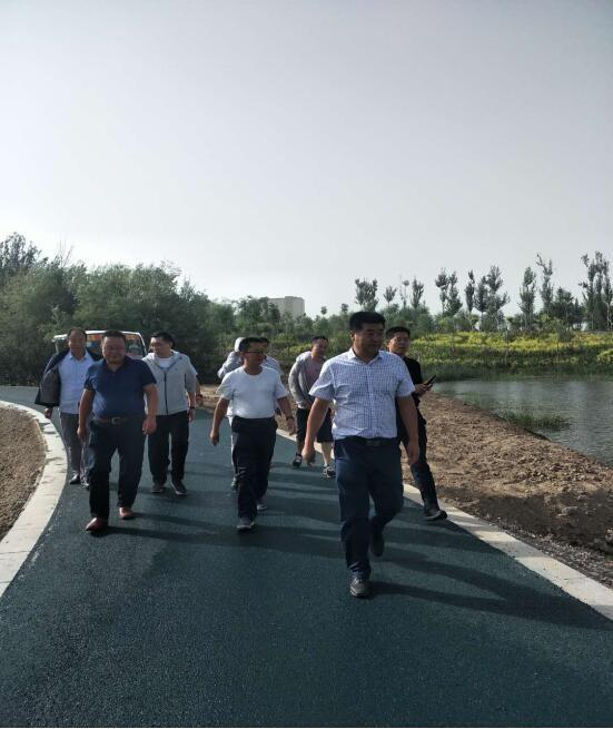 王韶华区长调研张掖国家湿地公园道路建设项目