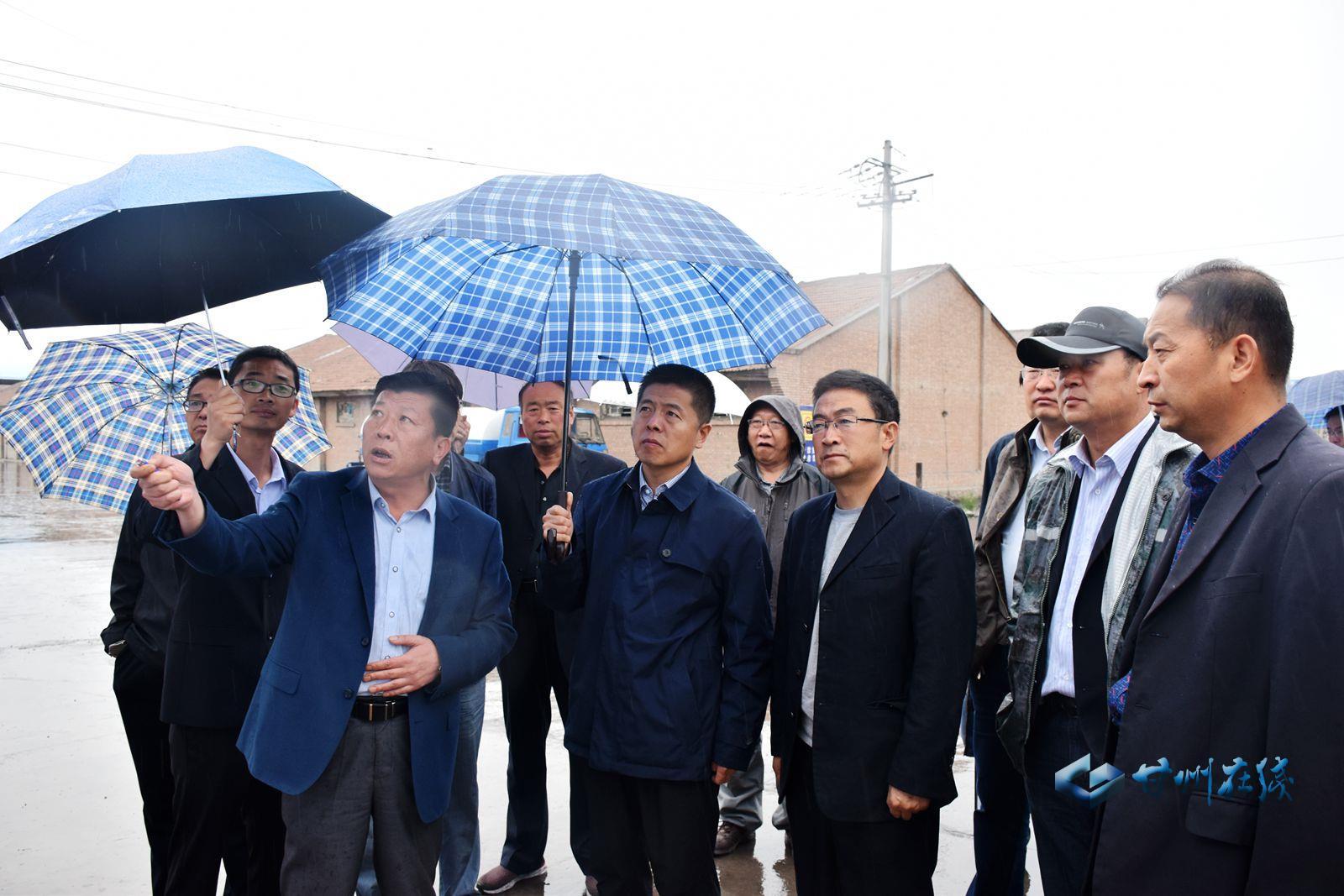 王韶华调研全区物流产业发展情况并现场办公