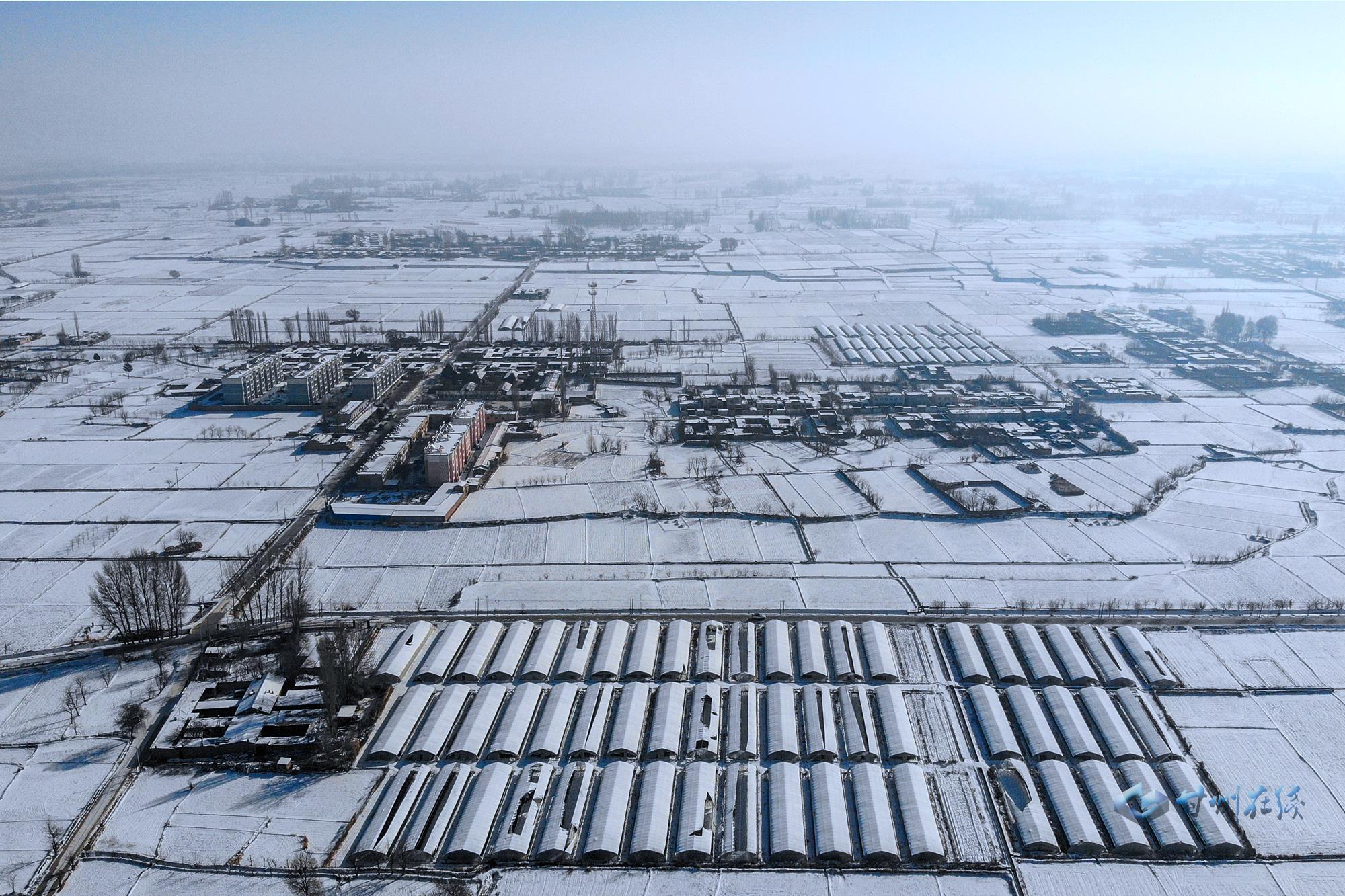 甘州村庄雪景美如画