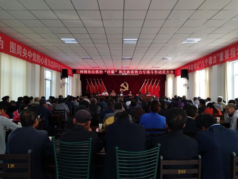 """三闸镇召开依法惩治""""村霸""""和宗族恶势力专项斗争动员大会"""