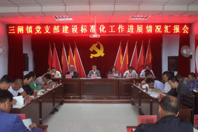 甘州区三闸镇召开党支部建设标准化工作进展情况汇报会