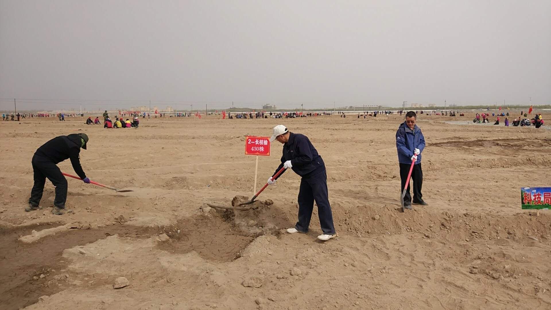 甘州区科技局组织开展春季义务植树活动