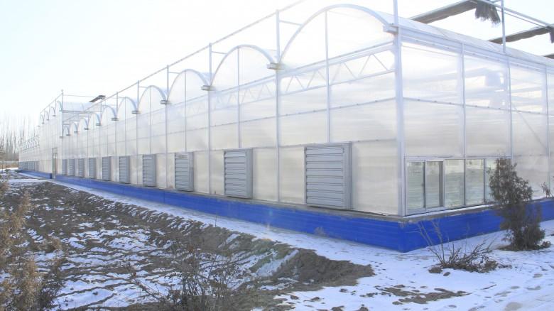 张掖绿洲现代农业试验示范区智能连栋温室(苗圃)主体工程完成查验