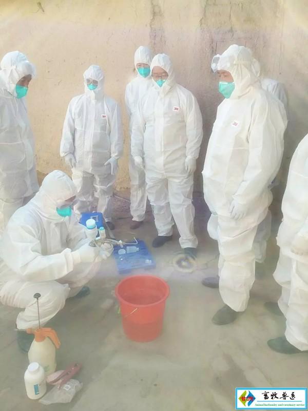 党寨镇举办羊布病免疫技术培训班