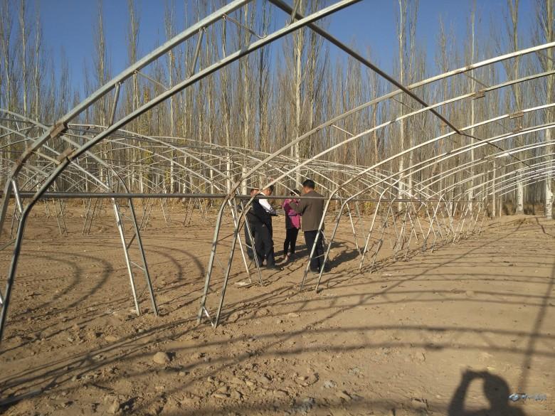 甘州区设施农业发展迅速