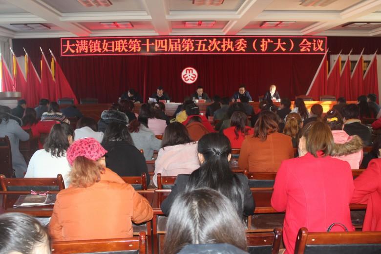 大满镇妇联第十四届第五次执委(扩大)会议顺利召开