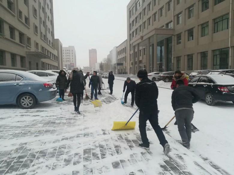 甘州区湿地局积极落实扫雪命令