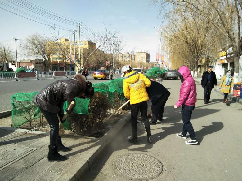北街街道积极开展节后环境卫生整治