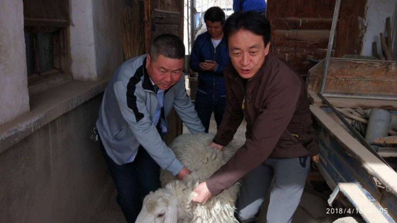 甘州区科技局积极开展扶贫帮扶工作