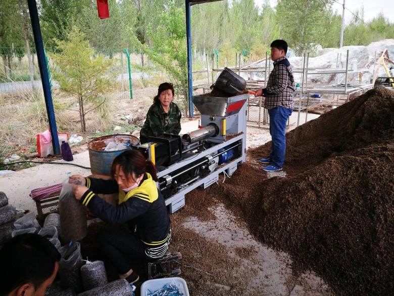 龙渠乡新胜村食用菌温室小区食用菌生产又添新品种