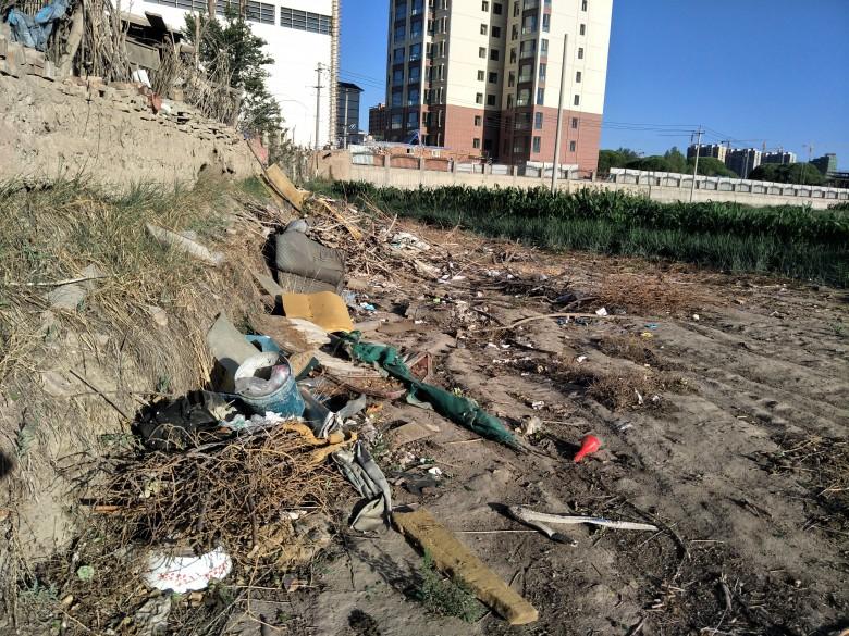 甘州区新墩镇大力开展环境卫生大整治行动
